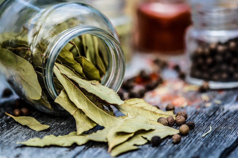 Can You Eat Bay Leaves